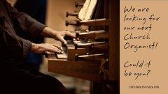 OrganistSearch.jpg